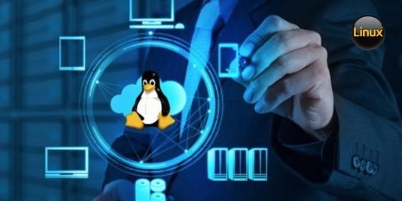 IBM Linux server hardware performance and software license costs